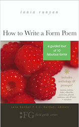 How to Write a Form Poem-A Guided Tour of 10 Fabulous Forms-poetry writing book