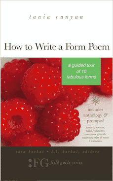 How to Write a Form Poem Cover-367